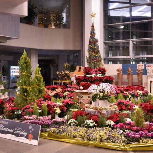christmas-display-2020